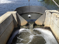 thin-plate v-notch weir measuring lagoon flow